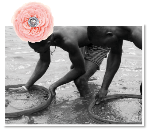 Wylde Flower Diamond Provenance