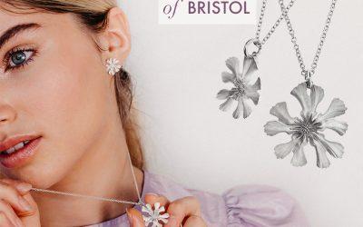 Bristol's 10th Anniversary